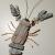Lobster 8 driftwood, pottery, stone, sand dollars, copper, metal, wire 26""